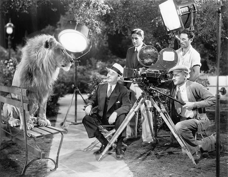 Terminología de películas y videos