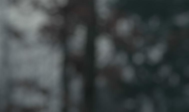 Efecto de desenfoque de la lente de la cámara